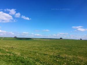 avebury field