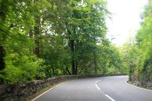 Blog road 1