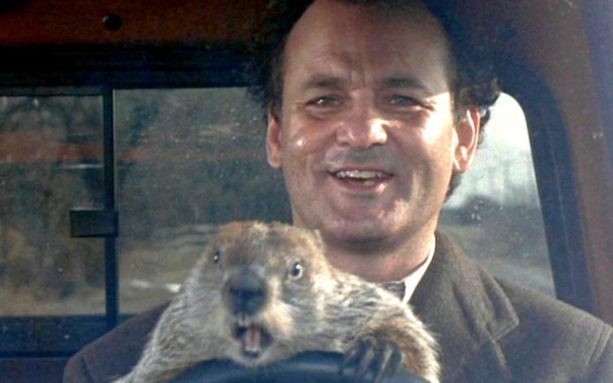 groundhog12